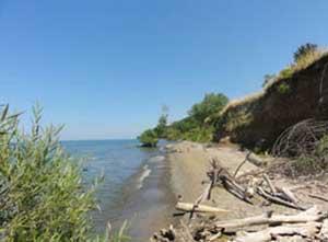 Sline Facing East Towards Niagara On The Lake Image