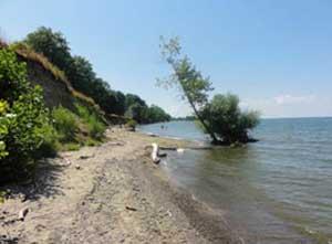 Niagara On The Lake Beach Best Beaches In World